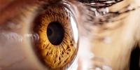 Enfermedades raras que afectan a la vista